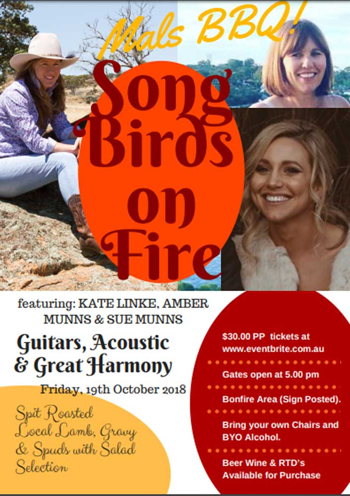 Promotional poster for Song Birds on Fire event
